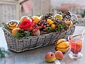 Weihnachtlicher Korbkasten mit Rosa 'Orange Sky' (Rose), Orangen