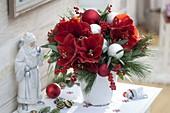 Rot-weißer Weihnachtsstrauß : Hippeastrum 'Red Lion' (Amaryllis), Ilex