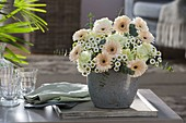 Gerbera Germini 'Cream Café' , Dianthus 'Goblin' (Nelken) , Chrysanthemum