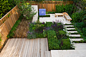 DES:Charlotte ROWE. VIEW ONTO Formal Town / City Garden IN London with DECKING, Box CUBES, Agapanthus 'ENIGMA', Salvia 'MAINACHT', 'PURPURASCENS' AND 'CARADONNA', Carex BUCHANANII