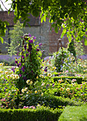 COWDRAY WALLED Garden, SUSSEX. Designer: Jan HOWARD. Box EDGED BEDS with Metal TRIPODS / OBELISKS AND CLEMATIS