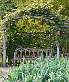 RHS Garden, ROSEMOOR, Devon