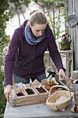 Frau bringt Kiste mit Aussaat - Utensilien