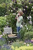 Frau geniesst den Duft von Rosa 'Kir Royal' (Kletterrose)