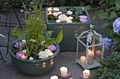 Abendliche Lichter - Terrasse mit Mini - Teichen