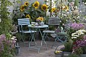 Sommer - Terrasse mit Helianthus (Sonnenblumen), Astilbe (Prachtspiere)