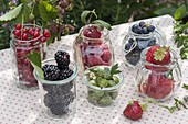 Frisch gepflueckte Beeren in Gläsern : Erdbeeren (Fragaria), Brombeeren