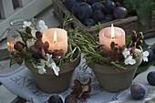 Kleine Kerzengestecke mit Rosmarin (Rosmarinus), Brombeeren