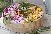 Sommerblueten und Kräuter zum Trocknen auslegen