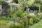 Buntes Beet mit Sommerblumen, Stauden, Gemüse und Kräutern