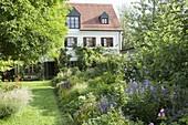 Bunter Garten mit Sommerblumen, Rosen und Stauden