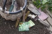 Für die Herbstaussaat eignen sich Spinat (Spinacia) und Feldsalat