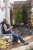 Terrassen - Sichtschutz selbstgemacht aus Weide