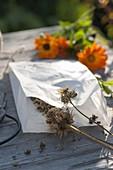 Samen von Calendula (Ringelblumen) in Tüte aus Butterbrotpapier sammeln