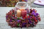 Herbstkranz mit violetter Kissenaster und rotem Laub