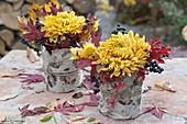 Blüten von Chrysanthemum (Herbstchrysanthemen) mit Blättern und Beeren
