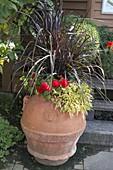 Terrakotta - Kübel (Olivenöl-Fass) mit Pennisetum setaceum 'Rubrum'