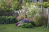 Buntes Sommerblumenbeet : Calibrachoa (Zaubergloeckchen), Tropaeolum