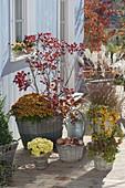 Herbstarrangement in Koerben auf Holzdeck