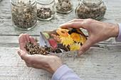 Papiertueten für Samen selbermachen