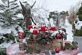 Spankorb mit Gaultheria (Scheinbeeren) als Adventskranz mit roten Kerzen