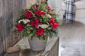 Weihnachtsstrauss mit Euphorbia pulcherrima (Weihnachtsstern), Pinus