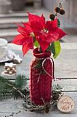 Selbstgemachtes Geschenk : Flasche als Vase mit roter Strick-Verkleidung