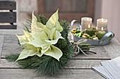 Weisser Weihnachtsstrauss aus Euphorbia pulcherrima (Weihnachtsstern