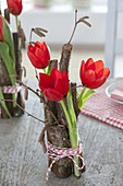 Tulipa (Tulpen) in Glasröhrchen mit Zweigen von Corylus avellana