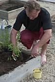Quadratbeete - Square Garden auf Betonpflaster bauen