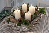 Adventskranz mit Zapfen von Picea (Fichte), Larix (Lärche) und Zweigen