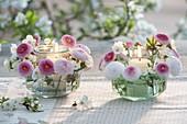 Kleine Windlichter mit Bellis Tasso (Tausendschön) und Blüten von Prunus