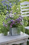 Kräuter-Strauss im Zink-Gefäss : Blüten von Schnittlauch