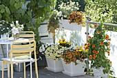 Weiss-gelb-oranger Balkon