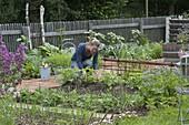 Gesamtansicht Biogarten