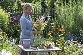 Frau bindet bunten Bauerngarten - Strauss aus Centaurea (Kornblumen)
