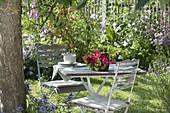 Lauschiges Plätzchen unterm Apfelbaum (Malus) : Tisch und zwei Stühle