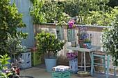 Griechisch - mediterraner Balkon mit Pflanzgefaessen und Hockern