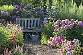 Schattiger Sitzplatz im Hortensiengarten