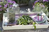 Frisch geerntete Brennessel (Urtica dioica) auf Tablett, für Tee