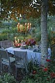 Gedeckter Tisch im Blumengarten unter Walnussbaum