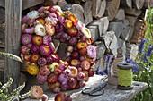 Gesteckter Kranz aus Helichrysum (Strohblumen)