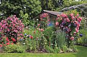 Gartenhaus geschützt hinter Beet mit Clematis und Rosen