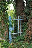 Altes Gartentor als Dekoobjekt