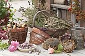 Korb mit getrockneten Sommerblumen und Kräutern für die Samen-Ernte
