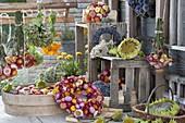 Gesteckter Kranz, Straeusse und einzelne Blüten und Topf von Xerochrysum