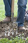 Boden mit Grabgabel umgraben , lockern