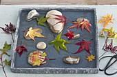 Flache Schale Kieselsteinen und Blättern im Wasser