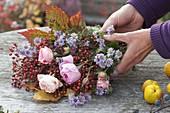 Zutaten für Herbststrauss : Rosa (Rosen und Hagebutten), Aster