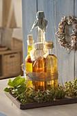 Flaschen mit Kräuter-Essig und -oel zusammengebunden auf Holz-Untersetzer